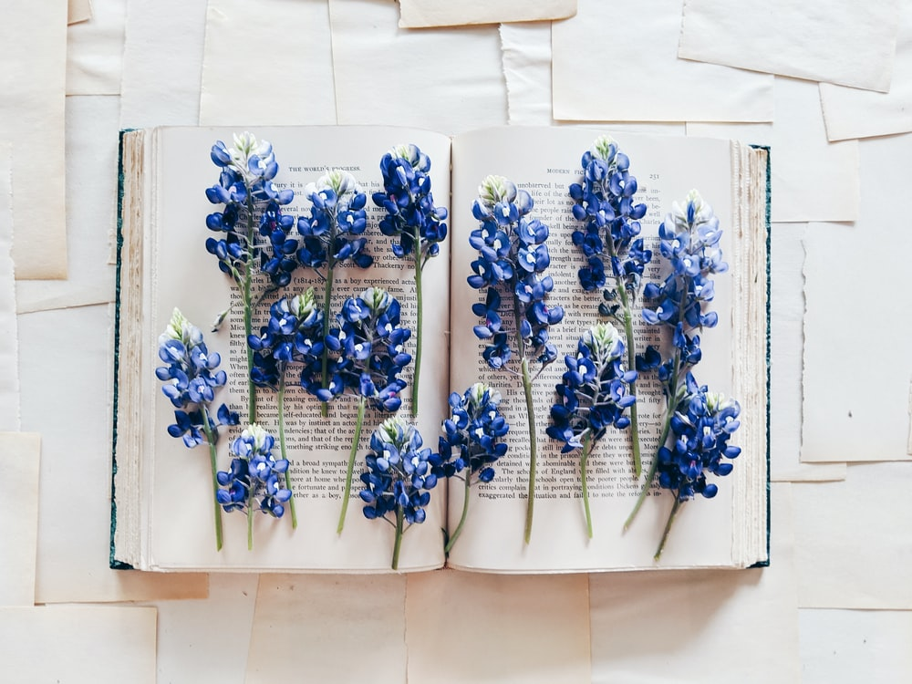 blue and white floral wall decor
