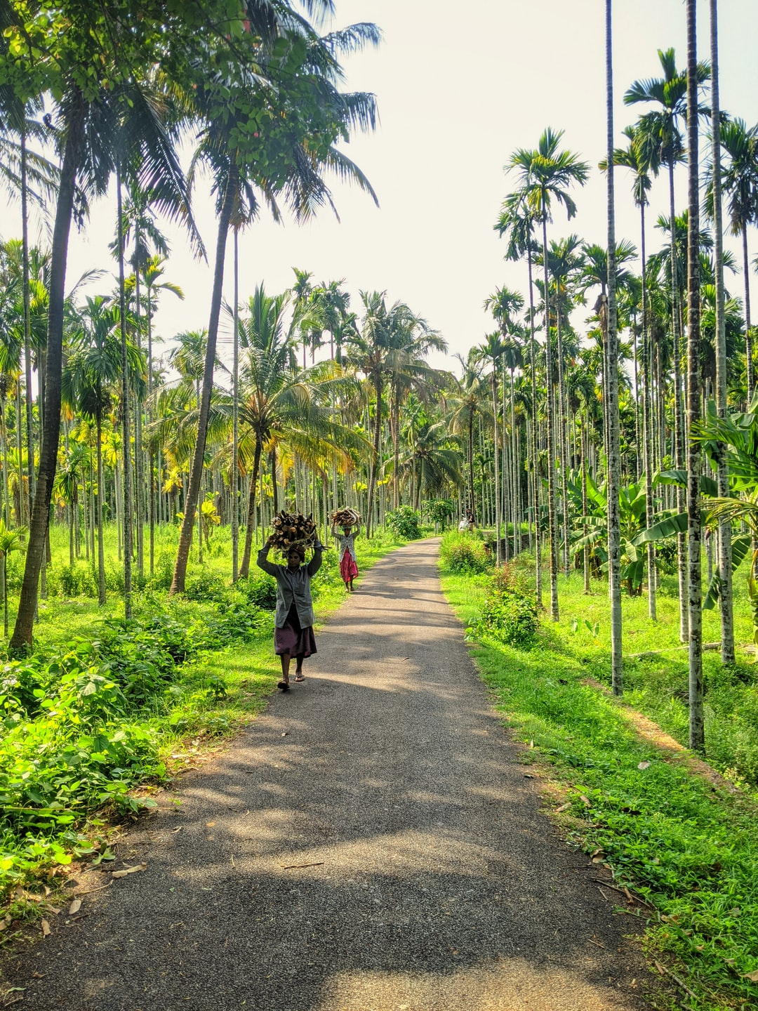 Took my bike for a ride across the village, through the pocket roads less travelled. Suddenly came across this place, something that reminded me of Goa. And then, as luck would have it, two ladies carrying firewood provided the perfect backdrop for my shot!