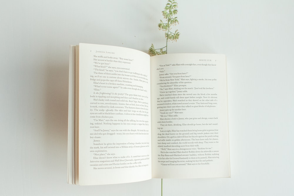 white book page with green plant