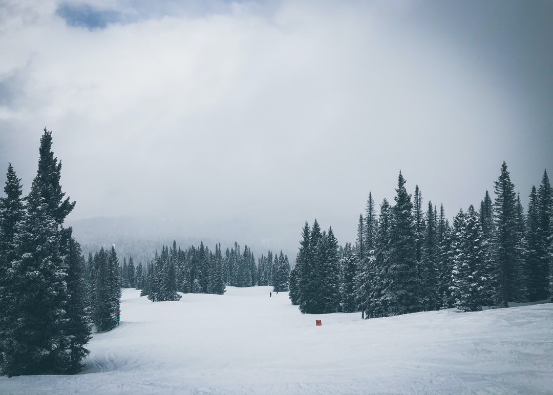 A snowy cold day on the mountain