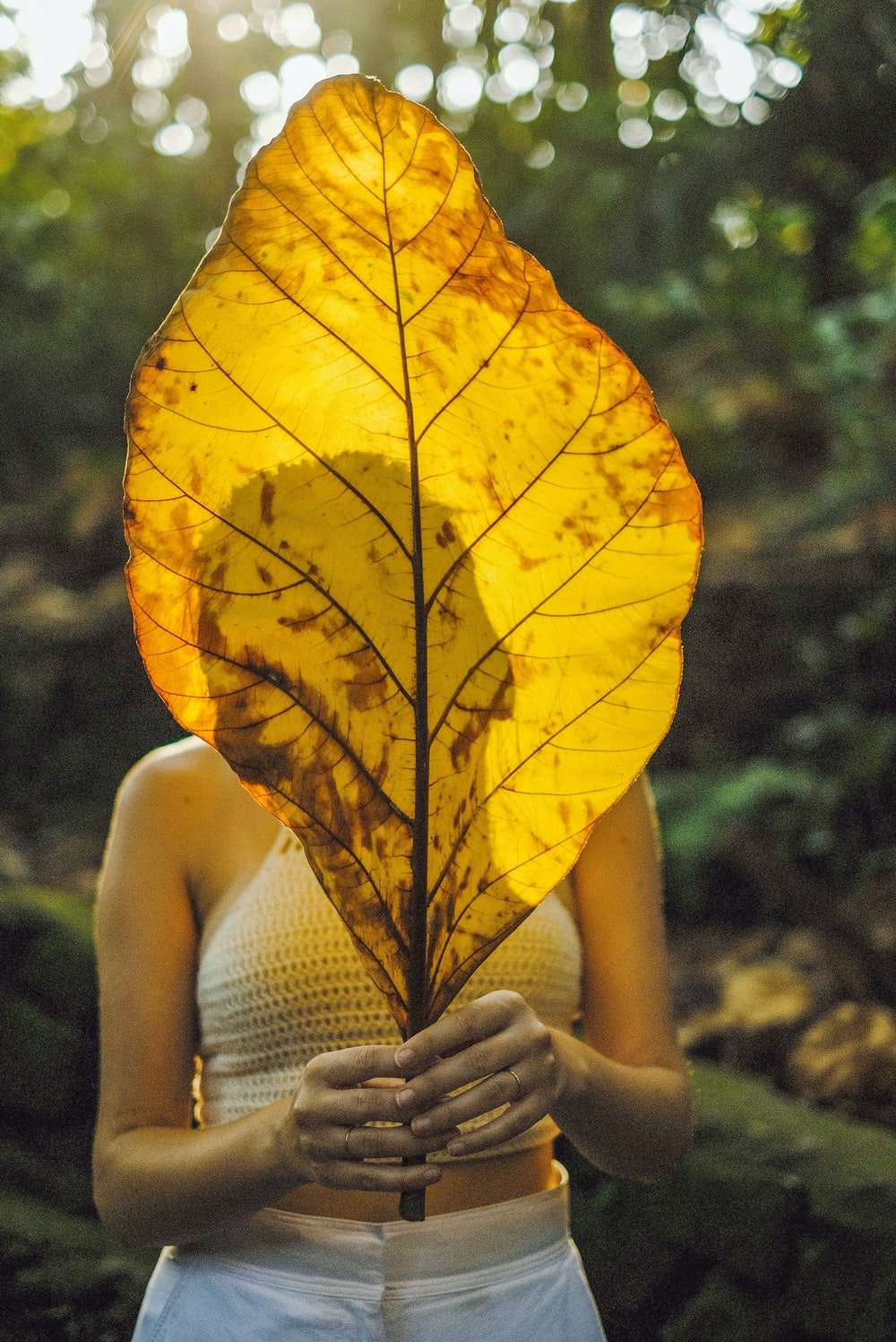 woman in white tank top holding yellow maple leaf