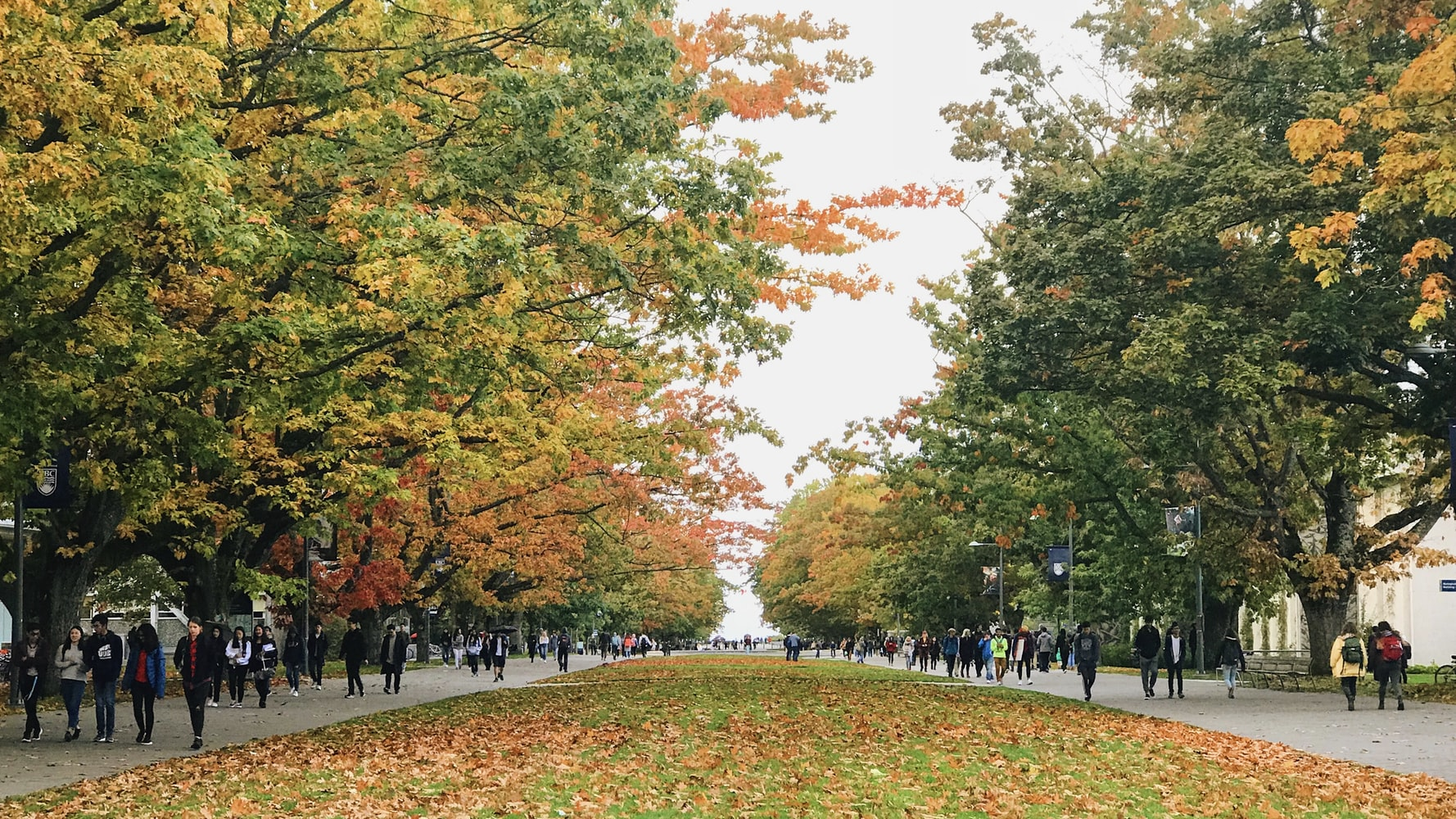 UBC campus in the fall