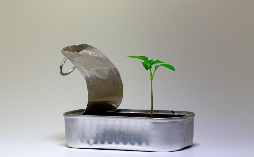silver steel flower pot on white table