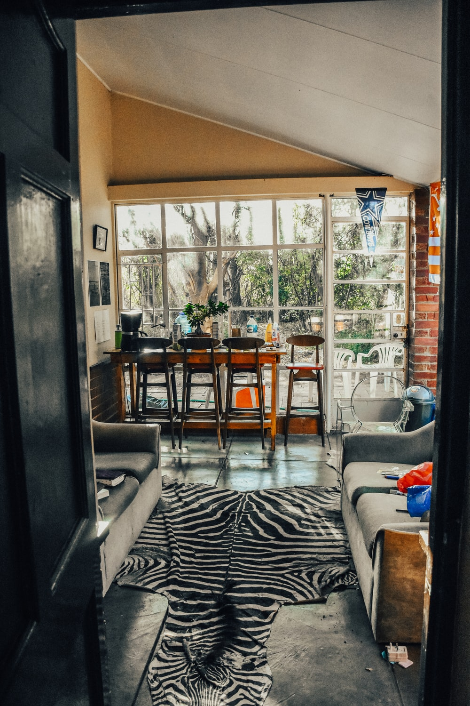 black and white zebra print area rug