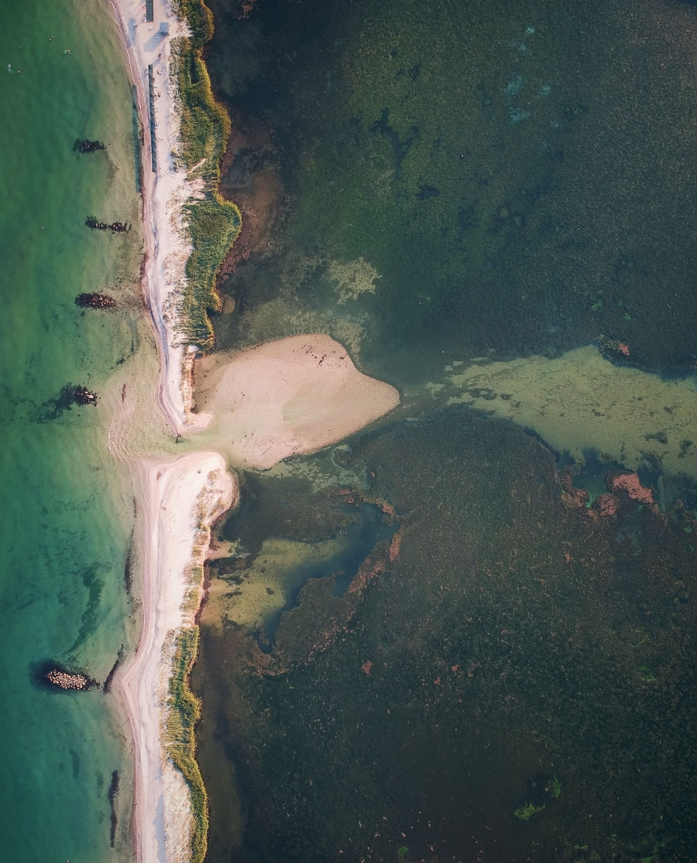 aerial view of green sea and white sand during daytime