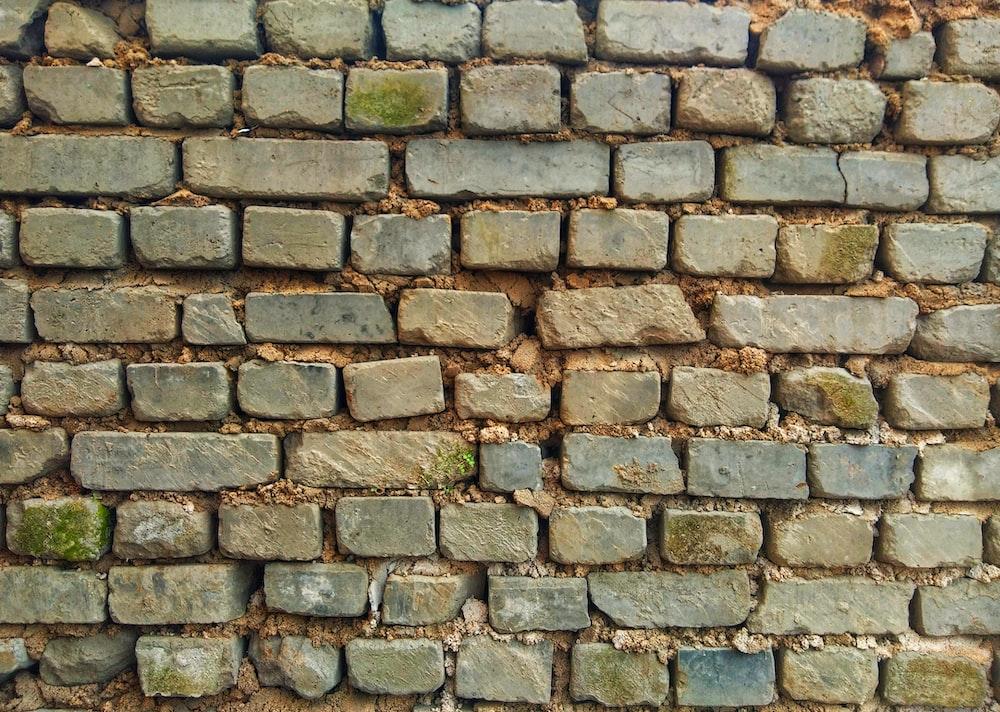green and brown brick wall