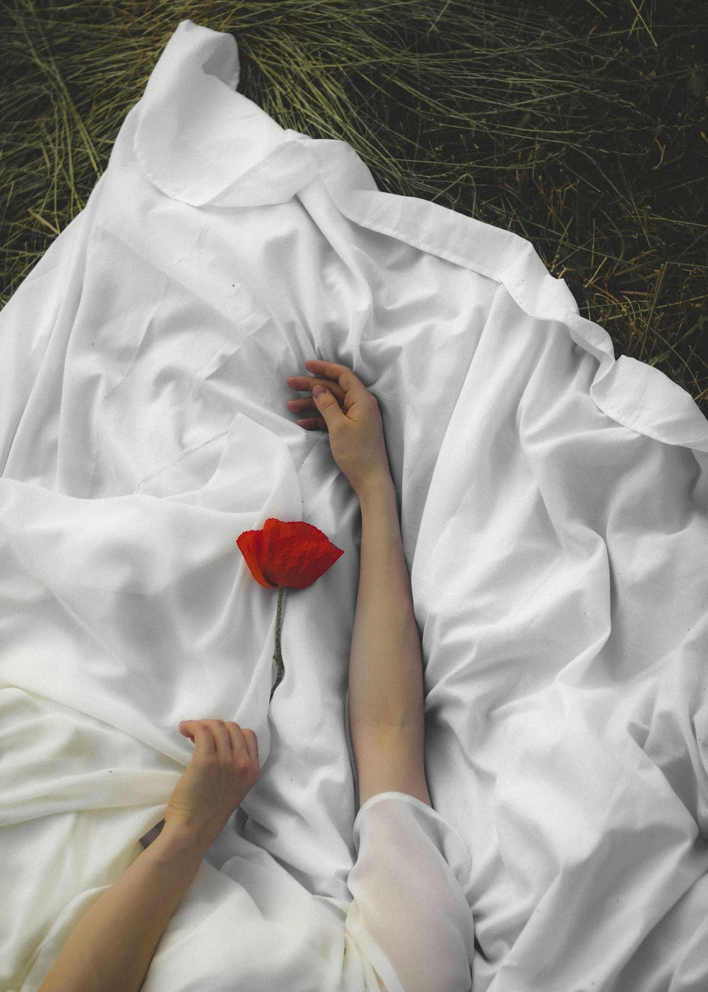 person in white robe holding red rose