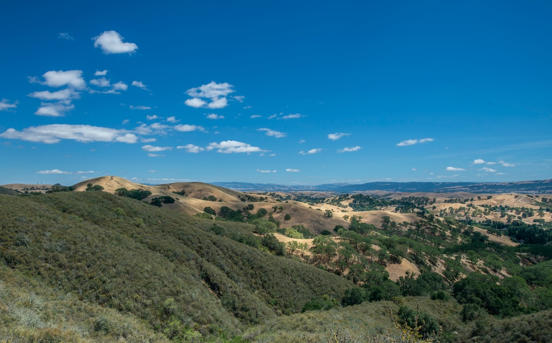 Vast views from Mt.Diablo with sprawling hills,oaks and cumulus clouds.