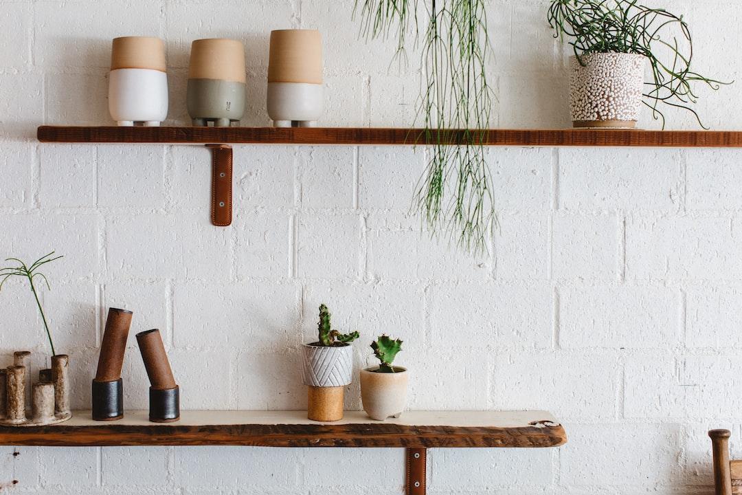 shelf, plants, ceramics, house, home, interior, decoration, space, table, succulents, mid-century,