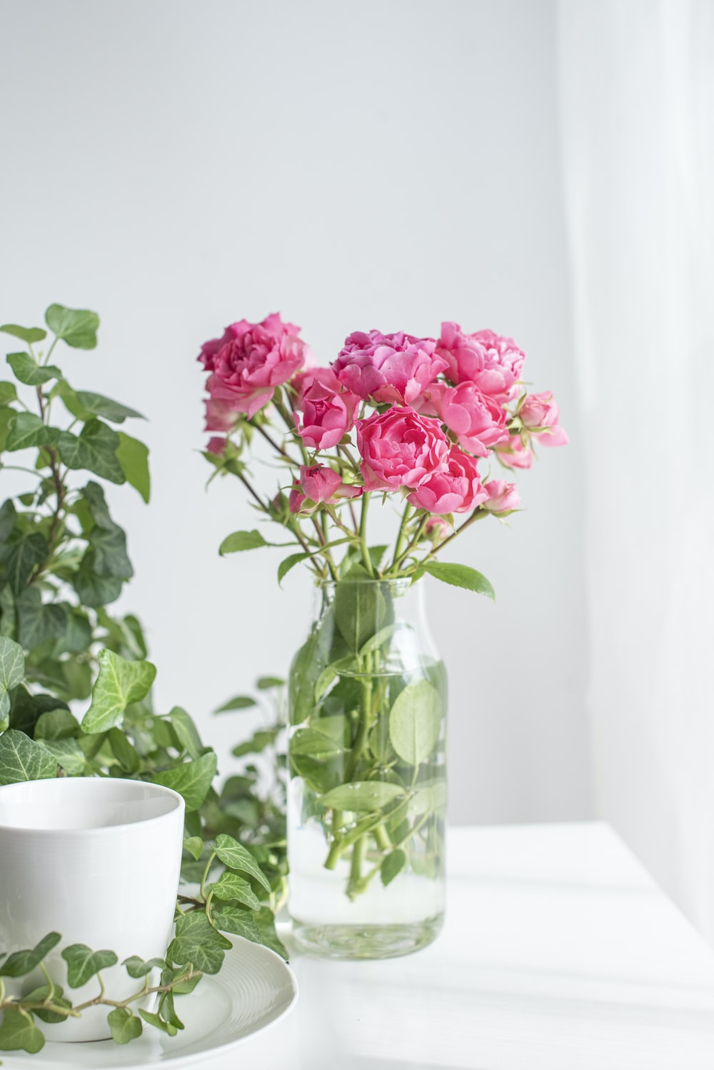 pink flowers in clear glass vase
