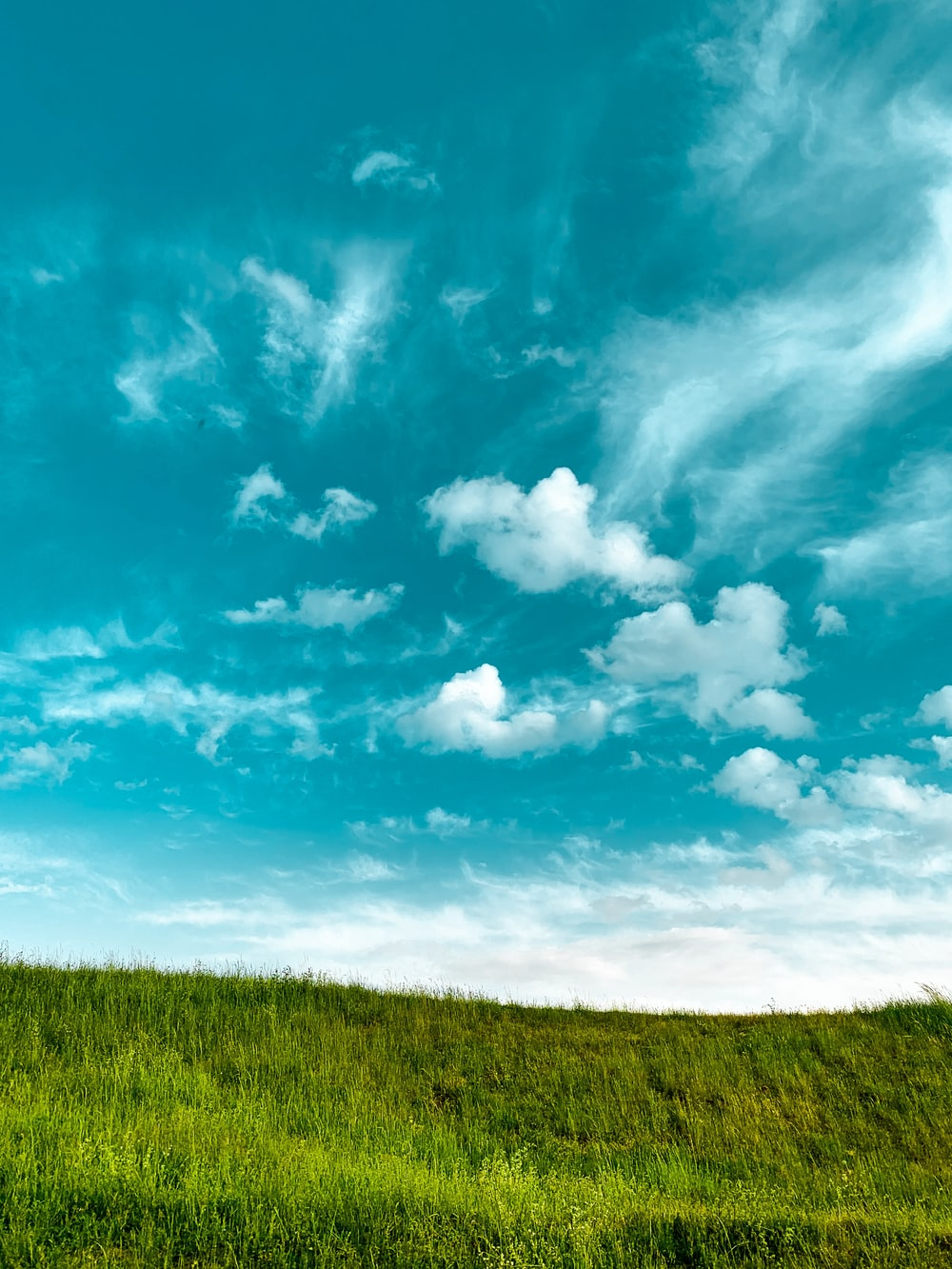 Grass And Sky Pictures Download Free Images On Unsplash Wallpaper grass field rainbow hill fog