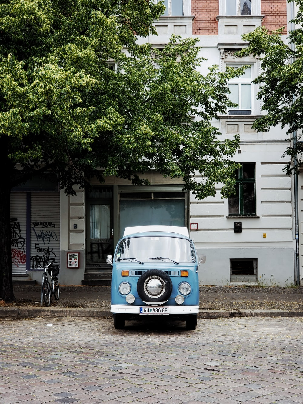 blue and white volkswagen t-2 parked beside green tree during daytime