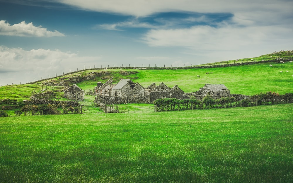 grayscale photo of house on green grass field