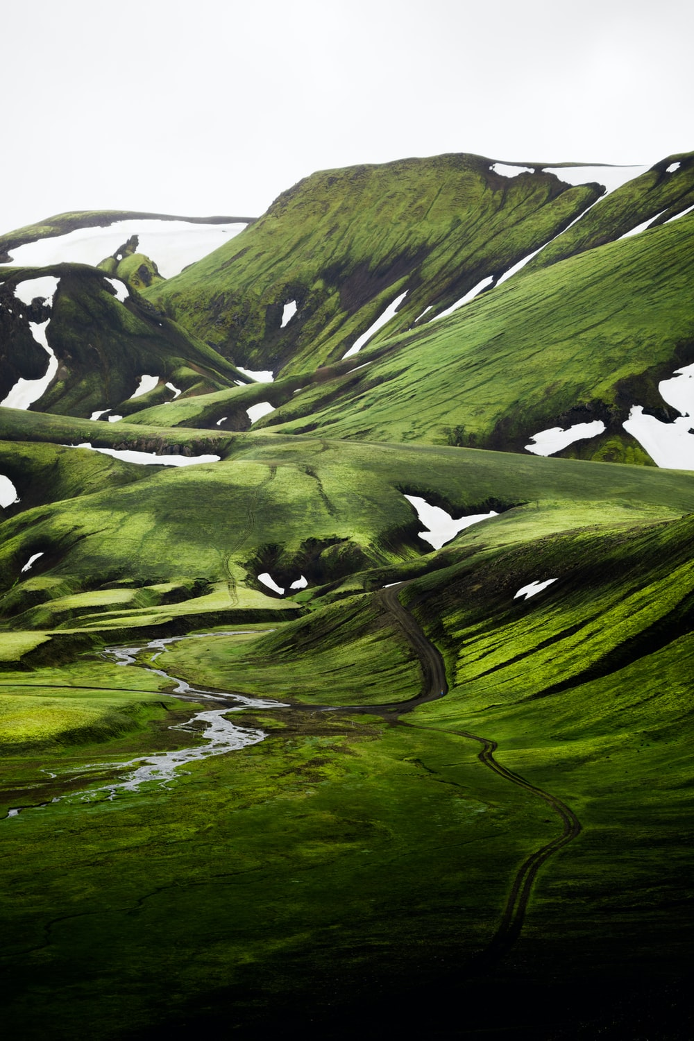 green moss on rock formation