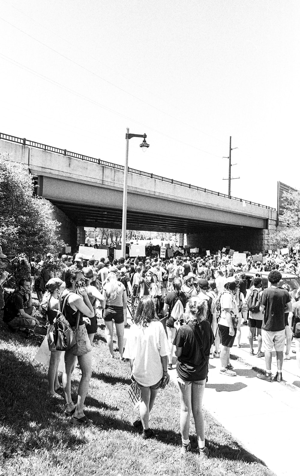 grayscale photo of people standing near trees