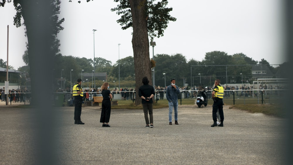 people standing near brown tree during daytime