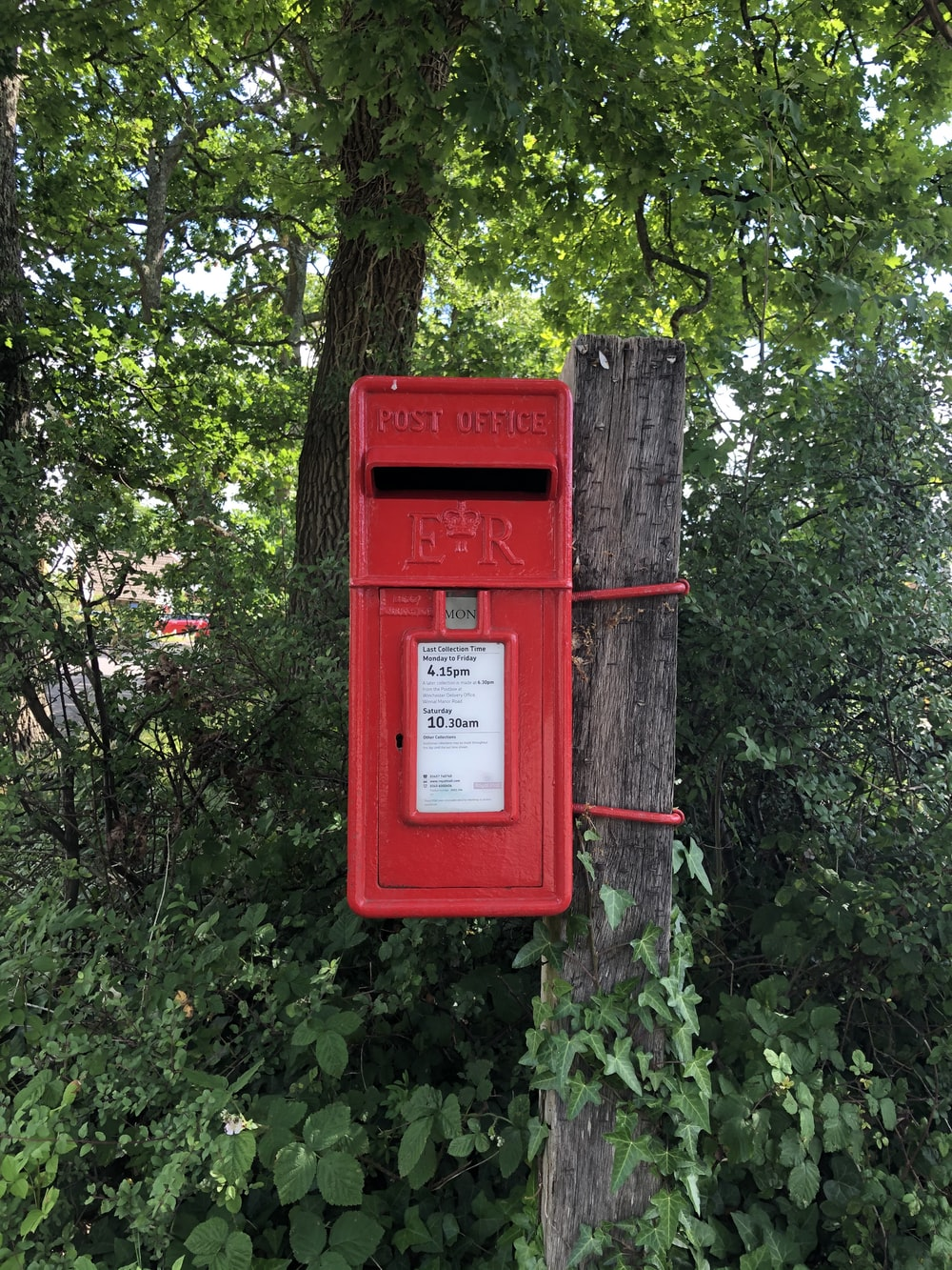 red mail box on tree trunk