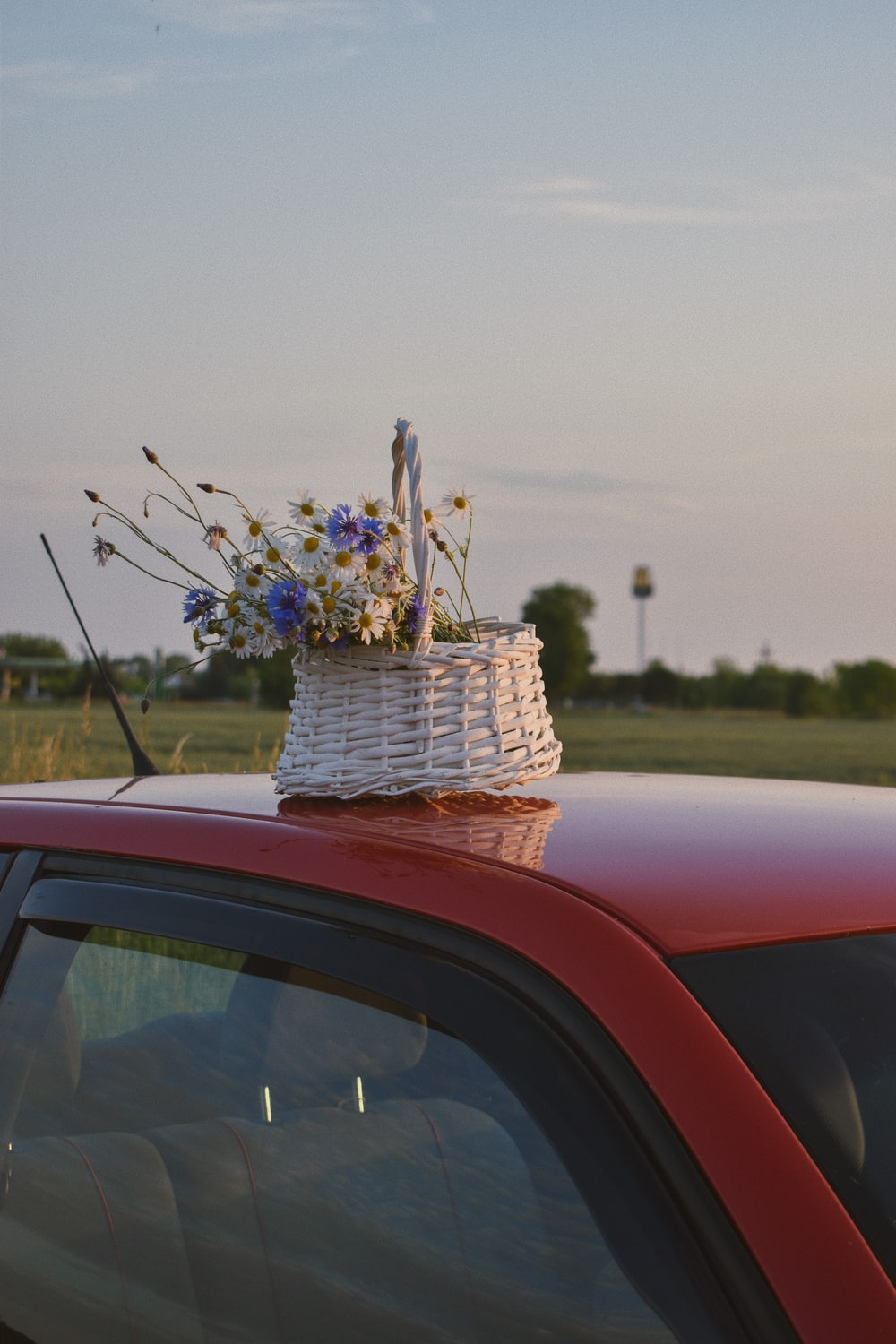 blue and white flower bouquet on red car