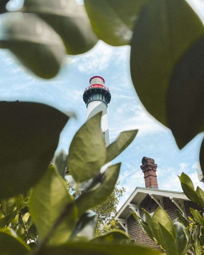 a lighthouse through some leaves in St Augustine, Florida
