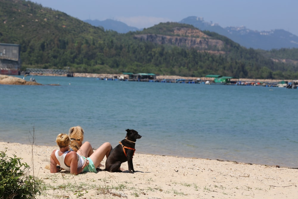 woman in black tank top lying on white sand beside black short coat dog during daytime