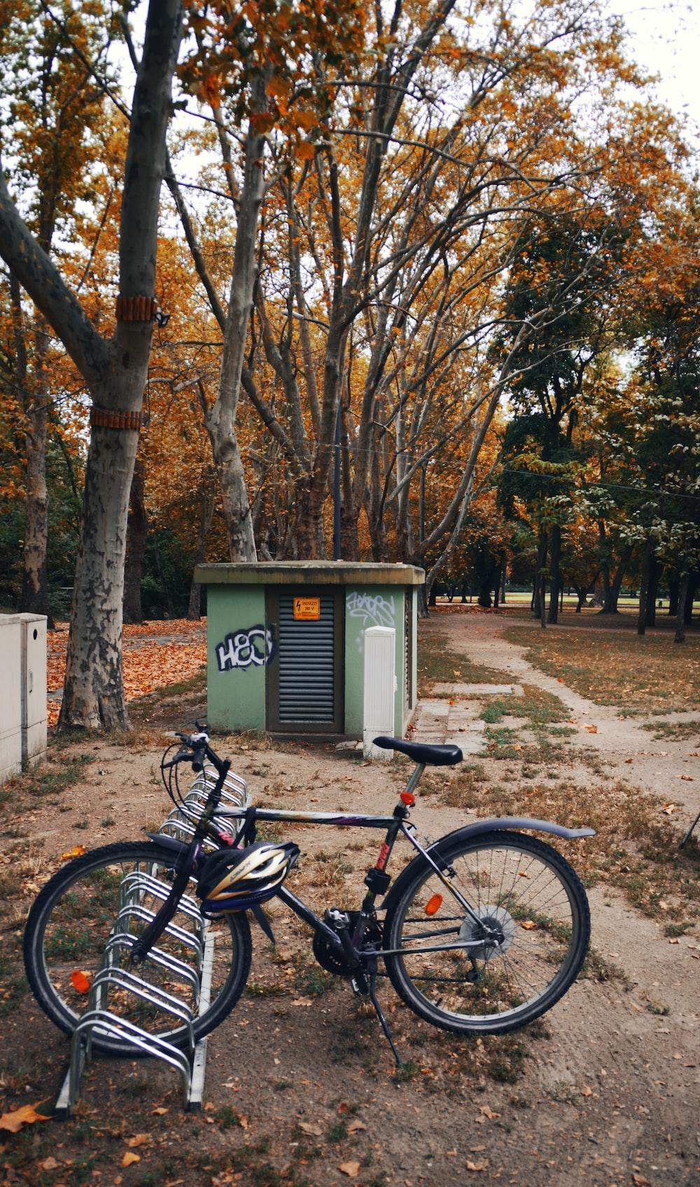 black commuter bike parked beside brown tree during daytime