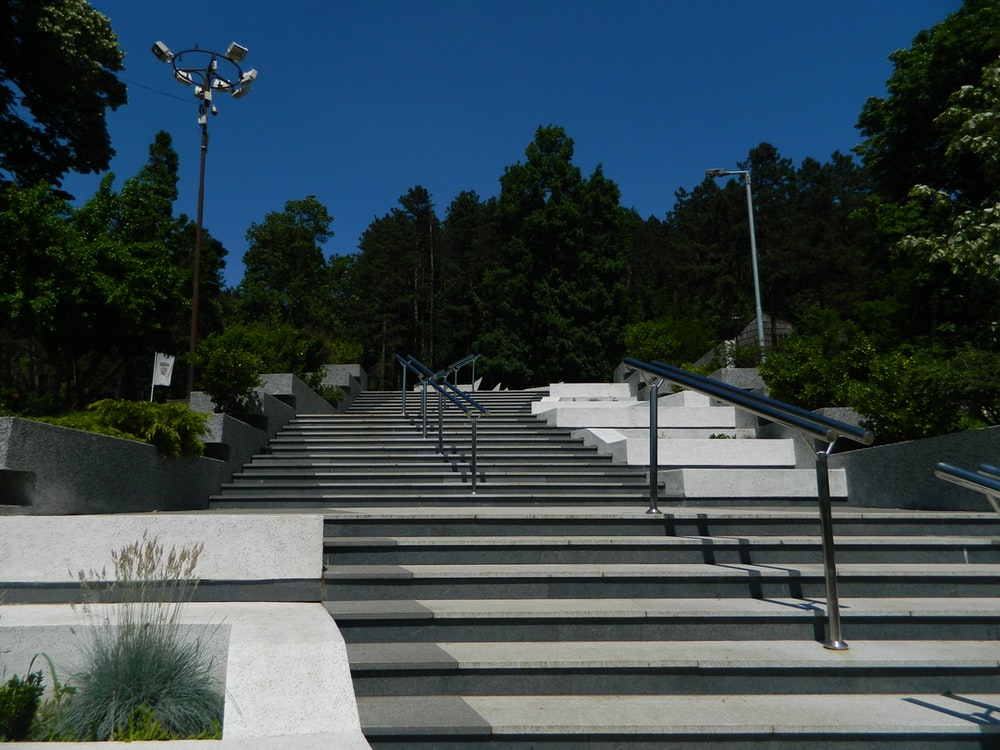 white concrete staircase near green trees during daytime