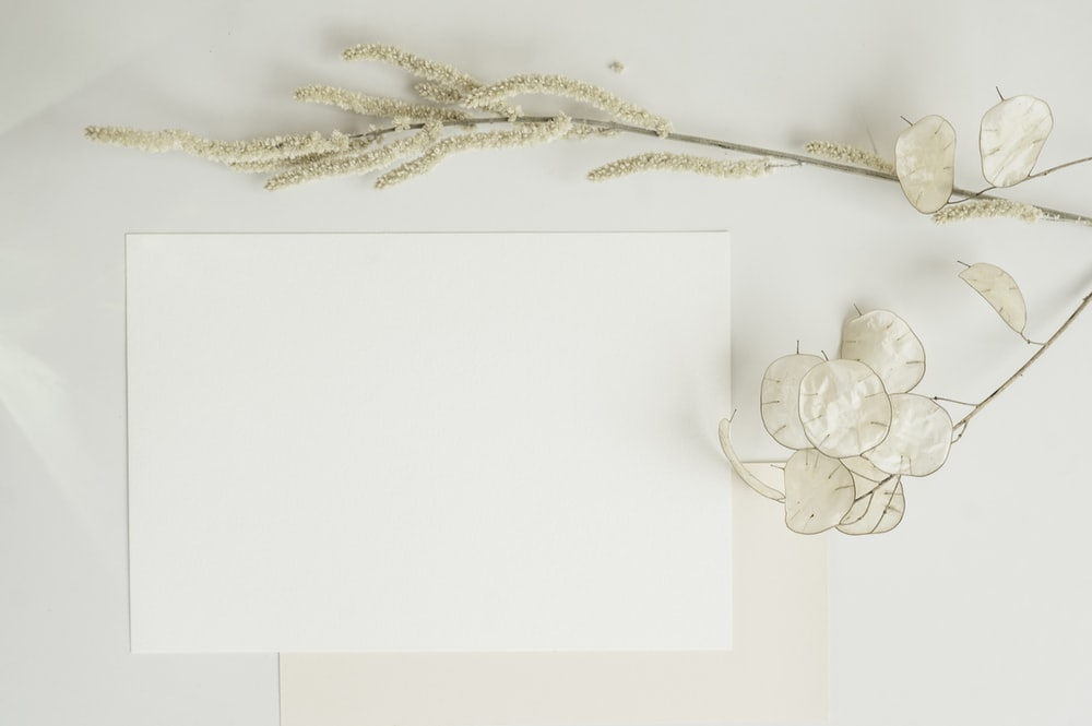 white and gold floral textile