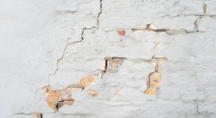 crepe muro