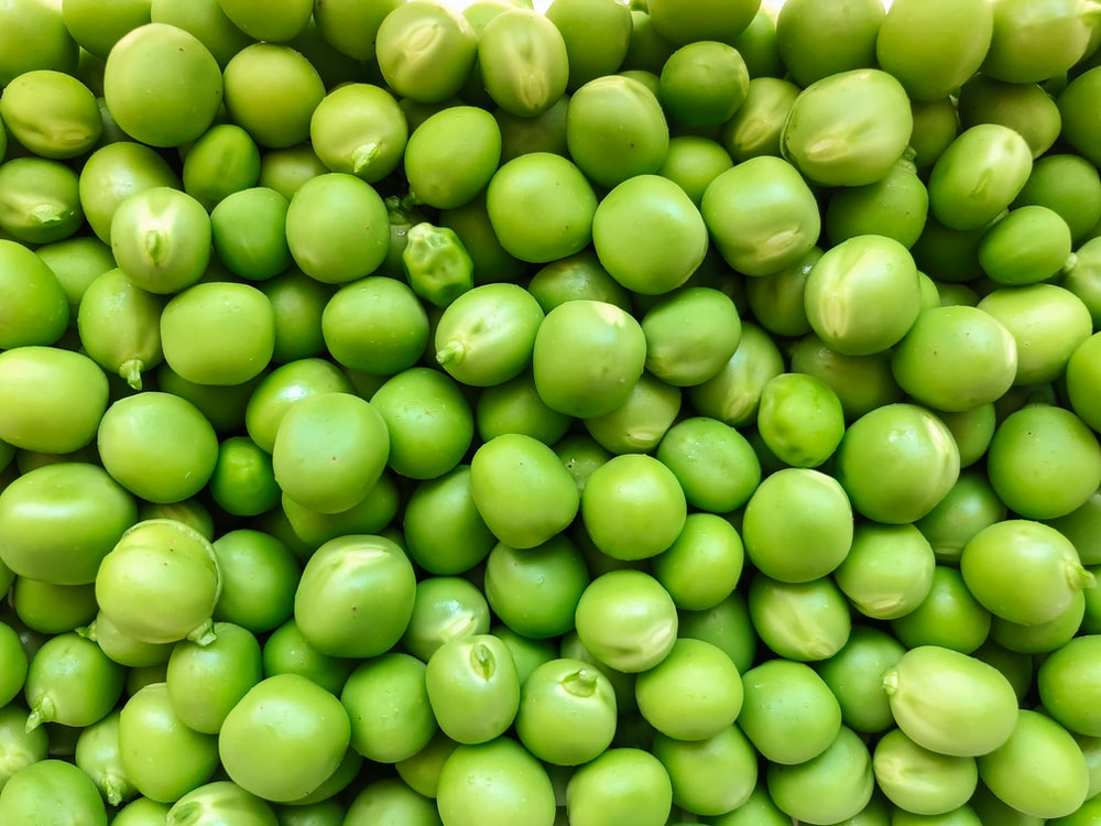 green round fruits in close up photography