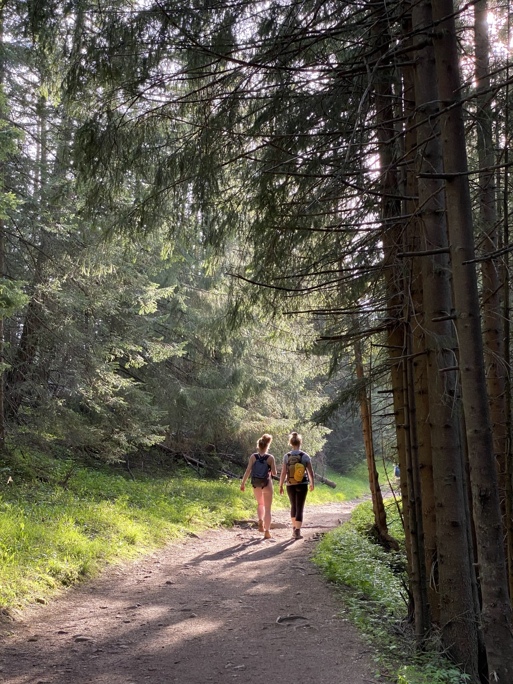 2 men walking on dirt road in the woods during daytime