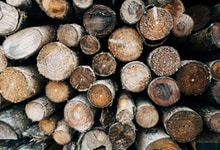 brown and black wood logs