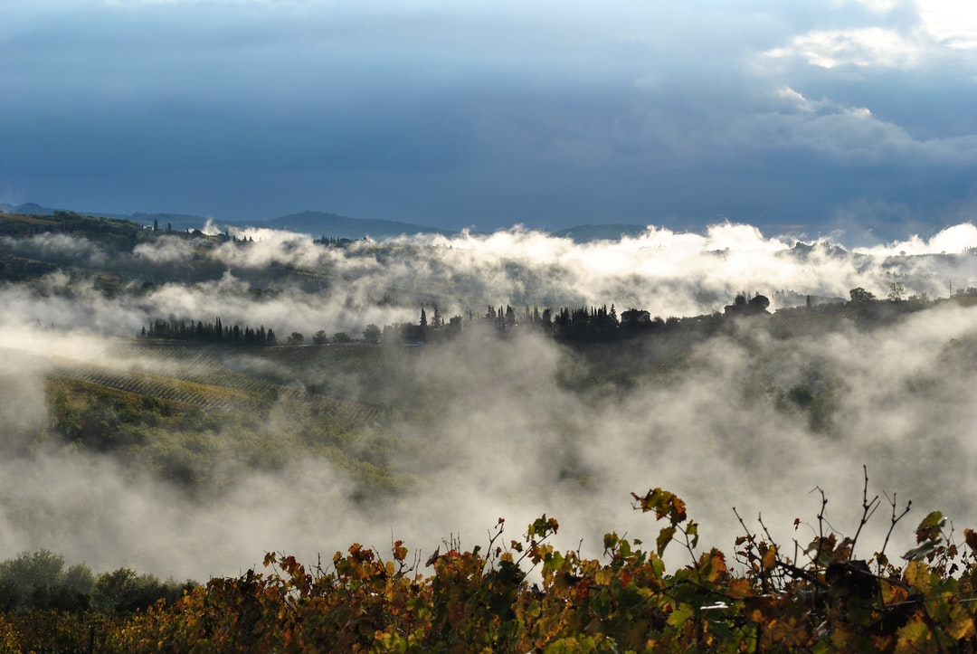 Early morning mist in Tuscany, Italy