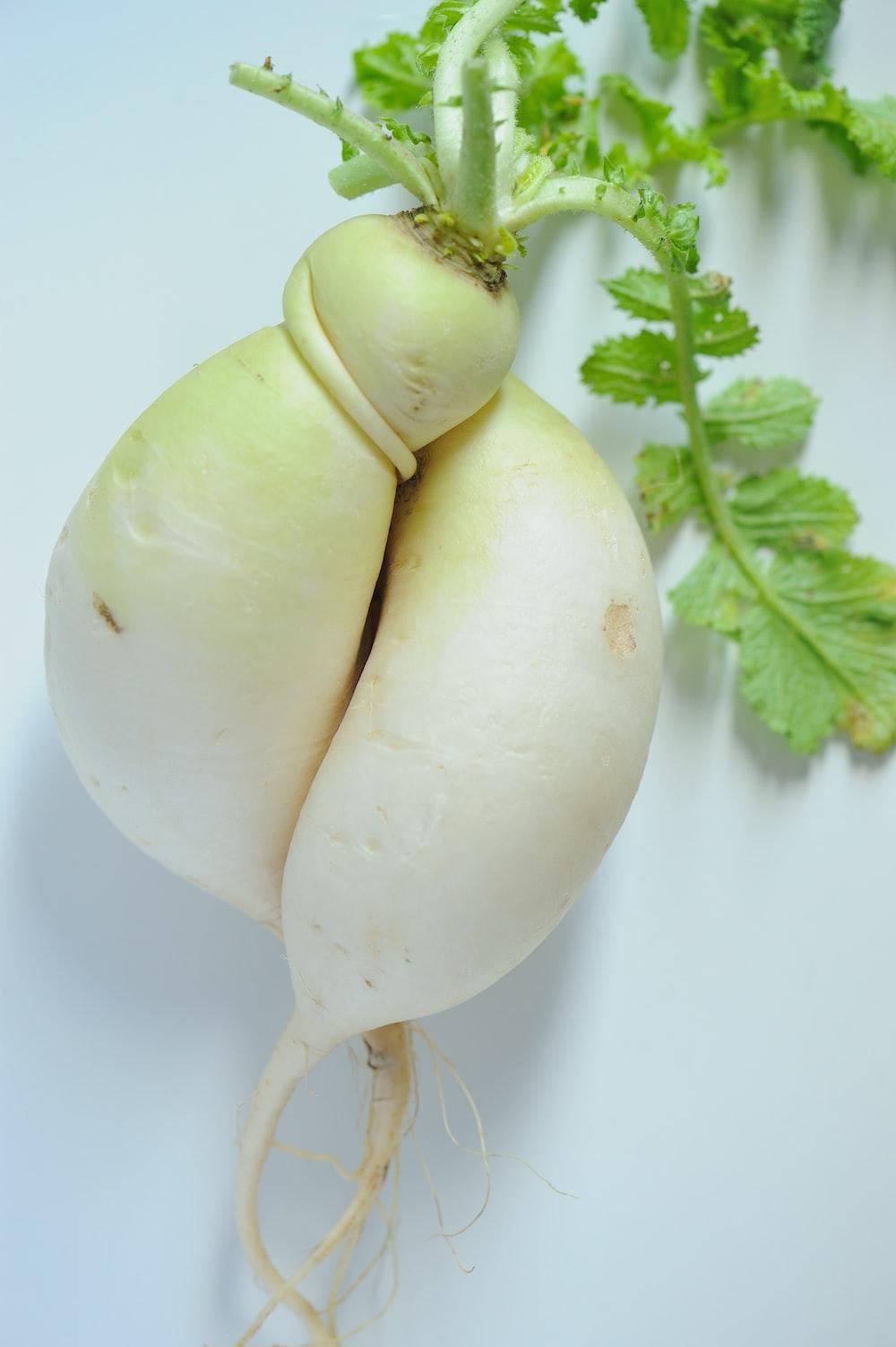 white garlic on white surface