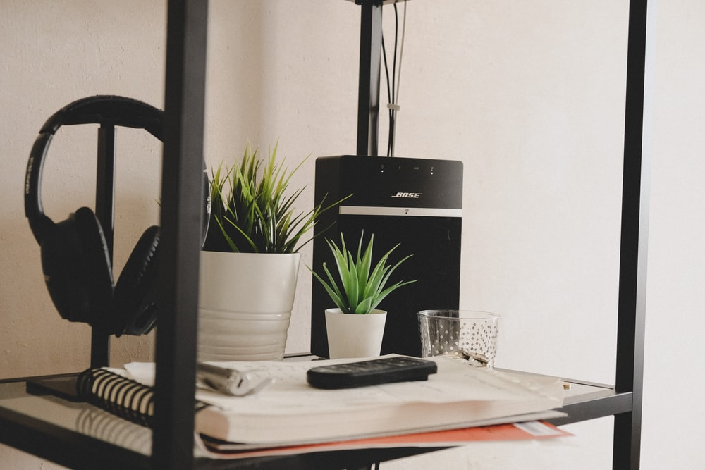 green potted plant on table