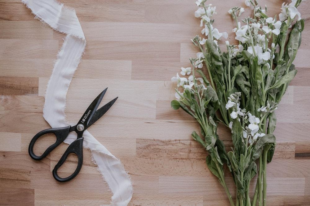 black handled scissors beside white flowers on brown wooden table