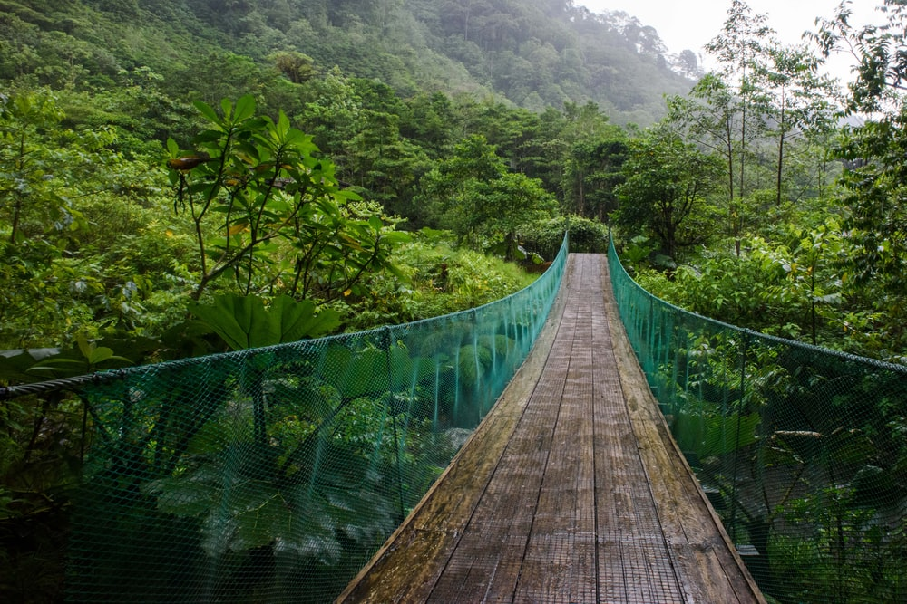 brown wooden bridge over green mountains during daytime