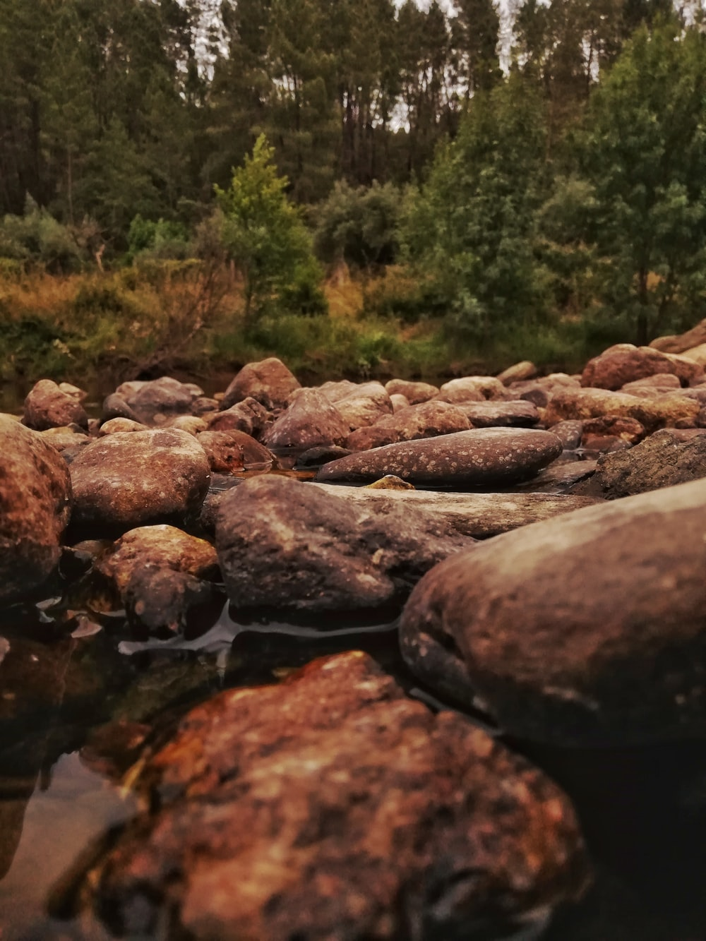 brown stones on river during daytime