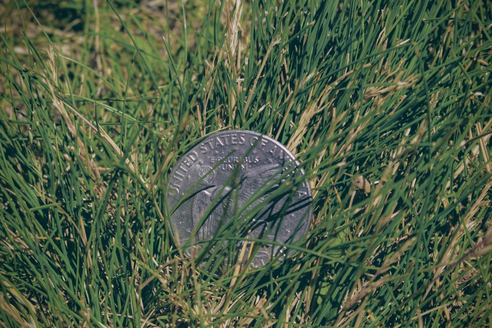 silver round coin on green grass