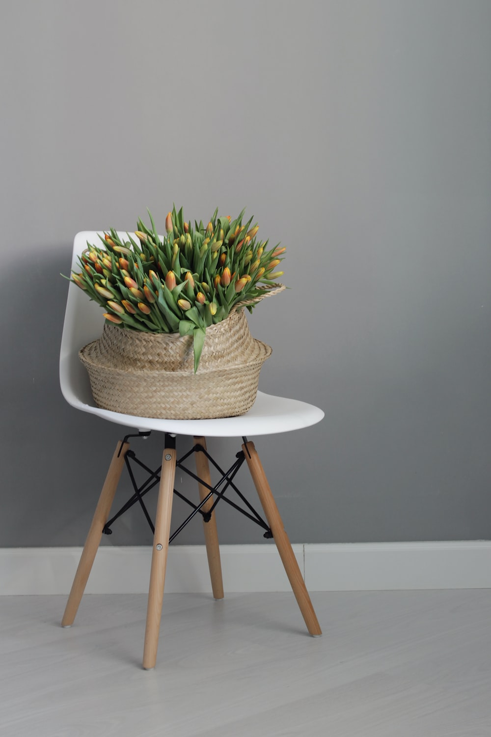 green and white plant on brown wooden seat