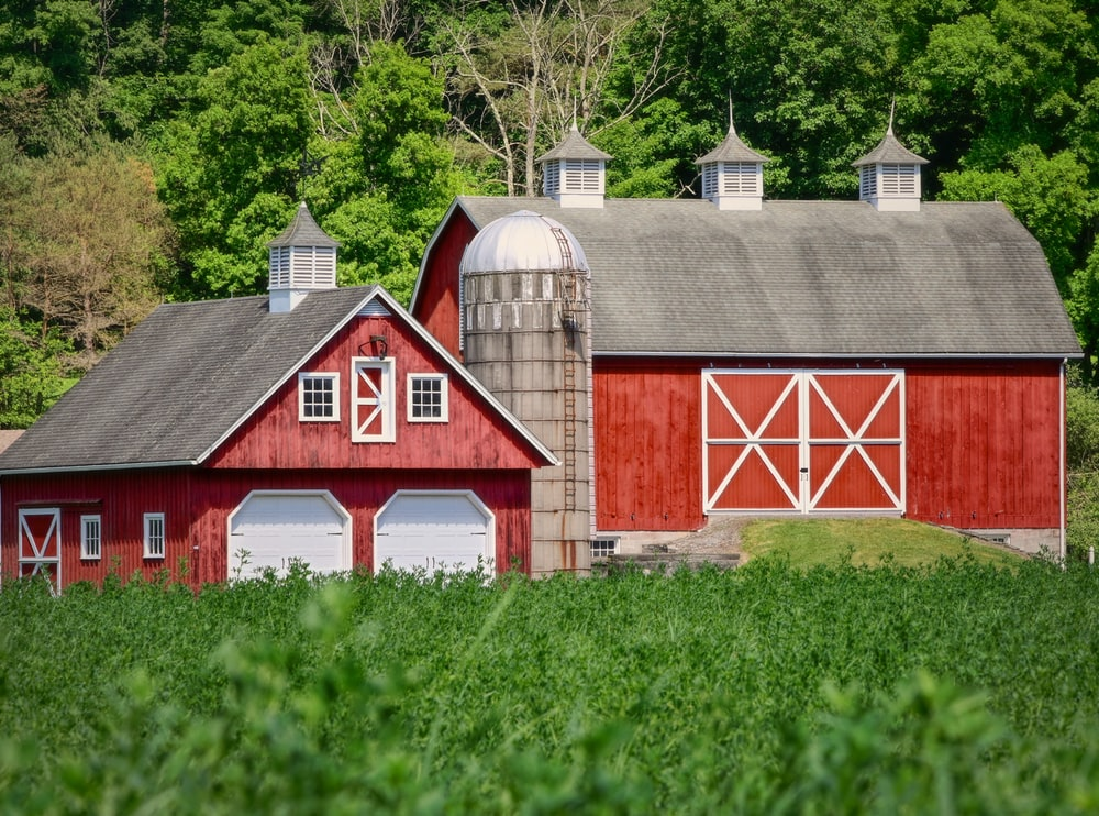 red and white wooden barn house on green grass field