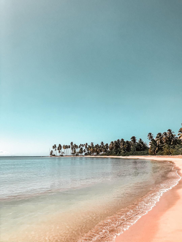 Costa Esmeralda, Miches