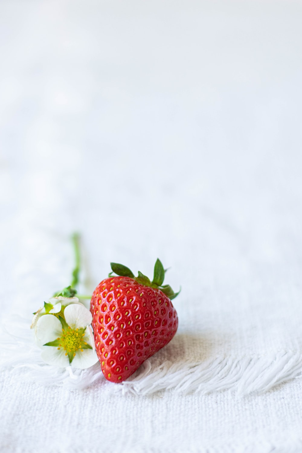 red strawberry on white textile