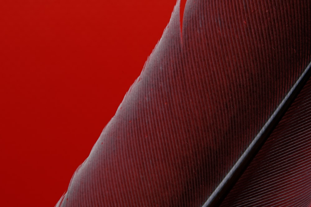 red textile on brown wooden table