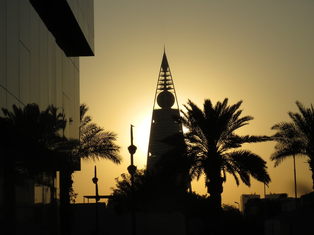 silhouette of trees and building during sunset
