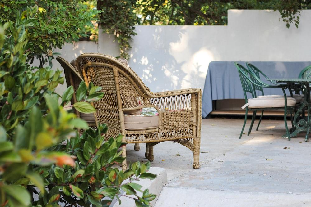 brown wooden armchair beside green plant