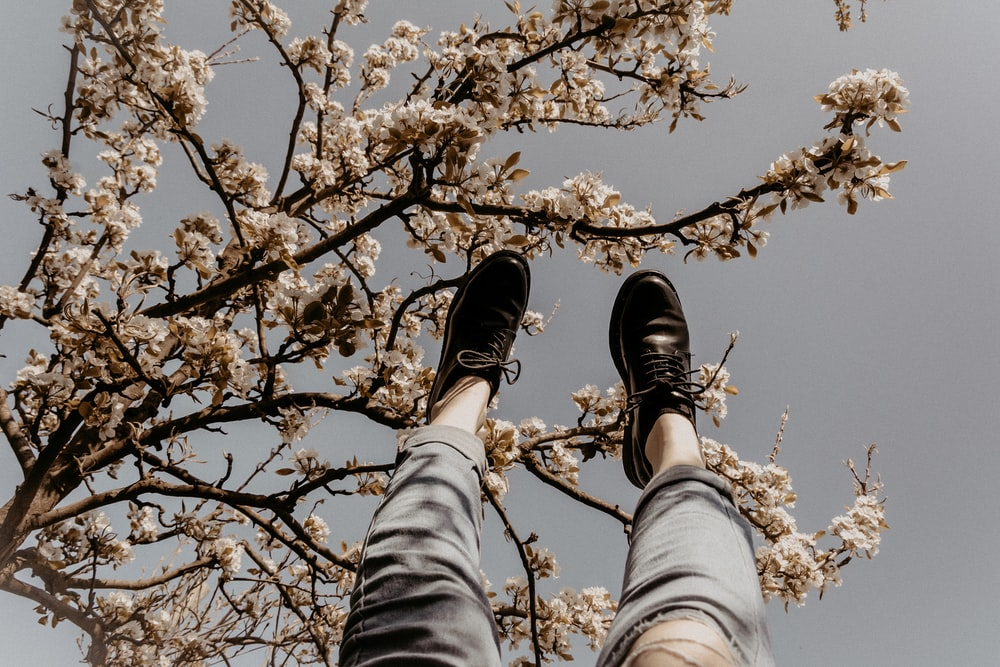 person in gray denim jeans and black shoes standing under brown tree during daytime