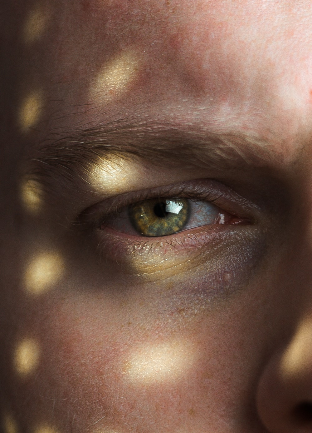 persons eye with brown eyes