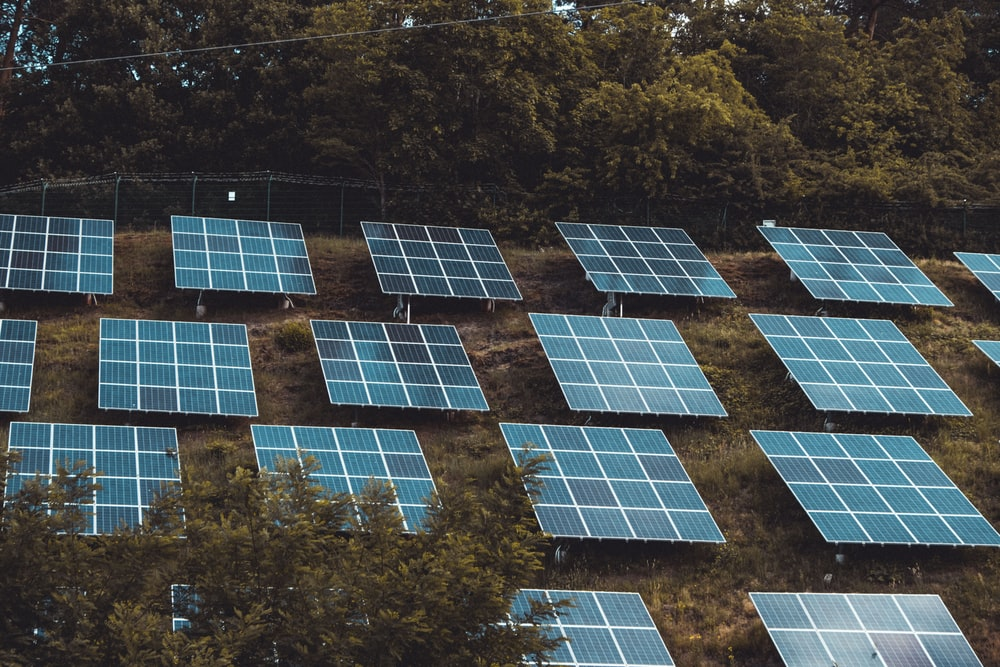 blue solar panels on green grass field