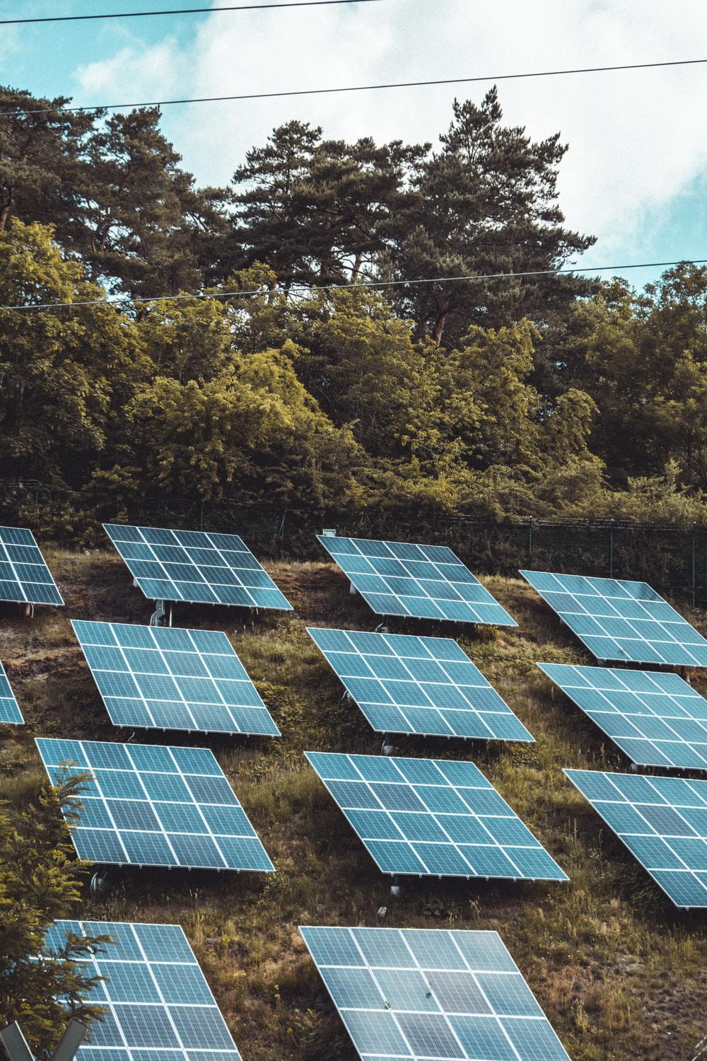 solar panels on green trees during daytime