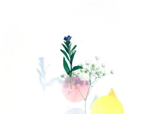 blue and yellow moon and purple flowers